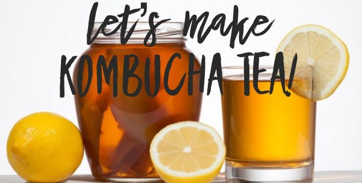 Kombucha Brewing