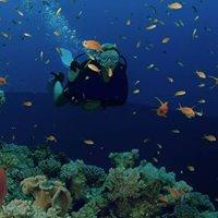 DMEX  Dive Middle East Exhibition