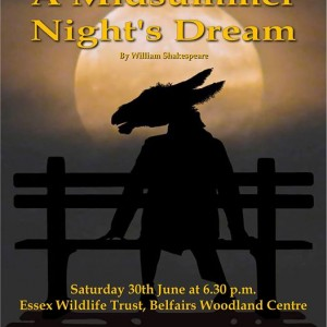 An Open Air Performance of A Midsummer Nights Dream