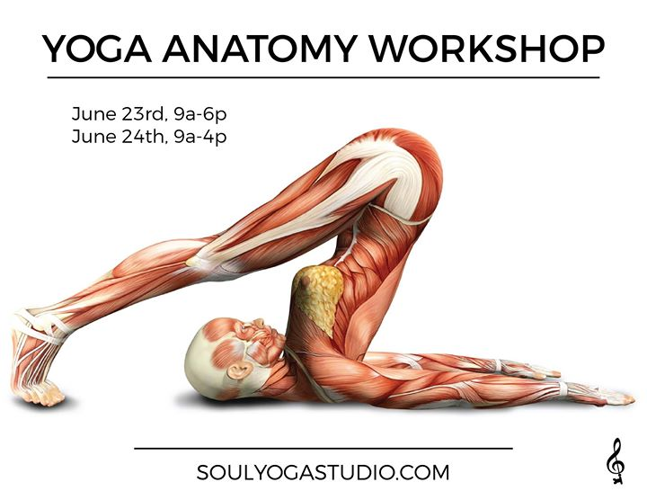 Yoga Anatomy Workshop at Soul Yoga, Greenville