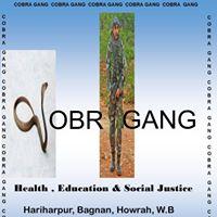 """Cobra Gang  - """"Hariharpur'"""