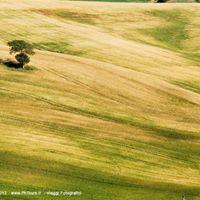 1 maggio fotografico in Toscana