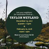Taylor Wetland Restoration Work Party