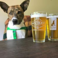 Bark and Brew 2017