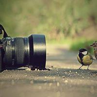 Photography Class - Westbury Park University