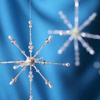 Princess Snowflake Workshop