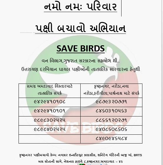 Save Birds On Uttarayn