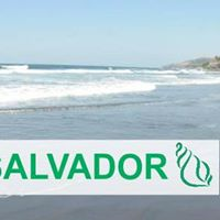 El Salvador Run Footsteps To Inspire