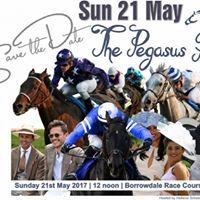 Hellenic Pegasus Race Day 2017