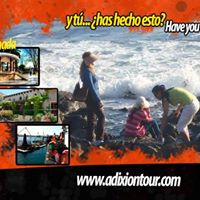 RoadTrip - La Rumorosa Tecate Valle de Guadalupe Ensenada