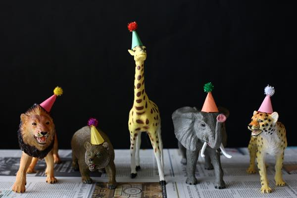 Zoo years eve animal fancy dress party! at The Bell Bicester, Bicester