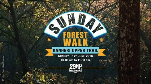 Sunday Forest Walk at Kanheri Upper Trail