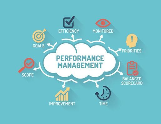 Developing and Implementing Performance Management Systems