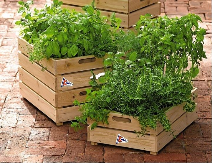 Make Your Own Garden In A Box