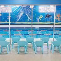 Swim Force Meet