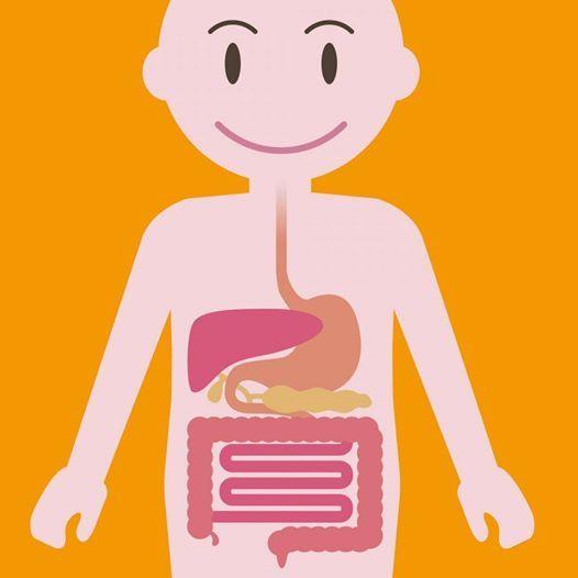Digestive Health Workshop