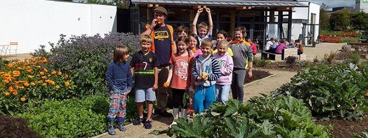 GROW COOK EAT Summer Camp 1