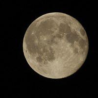 January Full Moon Meditation- Blue moon