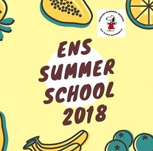 ENS Summer School July 2018