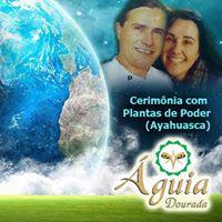 Cerimnia de Ayahuasca - Ribeiro Pires - 11032107