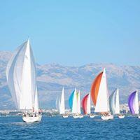 10   Ocean Medi Cup