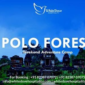 POLO Forest Weekend Tour