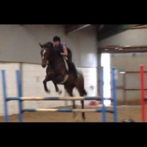 Unaffiliated Show Jumping
