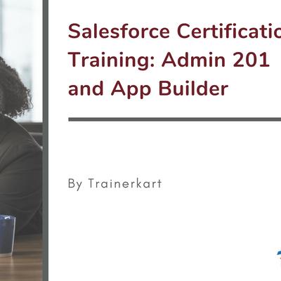 Salesforce Admin 201 and App Builder Classroom Training in Detroit MI