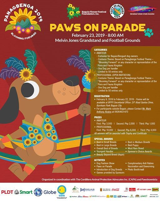 Panagbenga 2019 Paws on Parade Dog Fashion Show