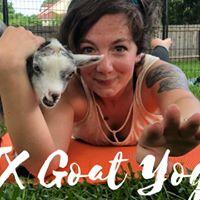ATX Goat Yoga