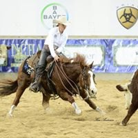 2017 NCHA National Finals &amp 2018 Breeders Incentive
