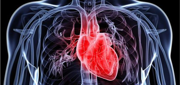 Courage and Innovation- Heart Failure and Transplantation