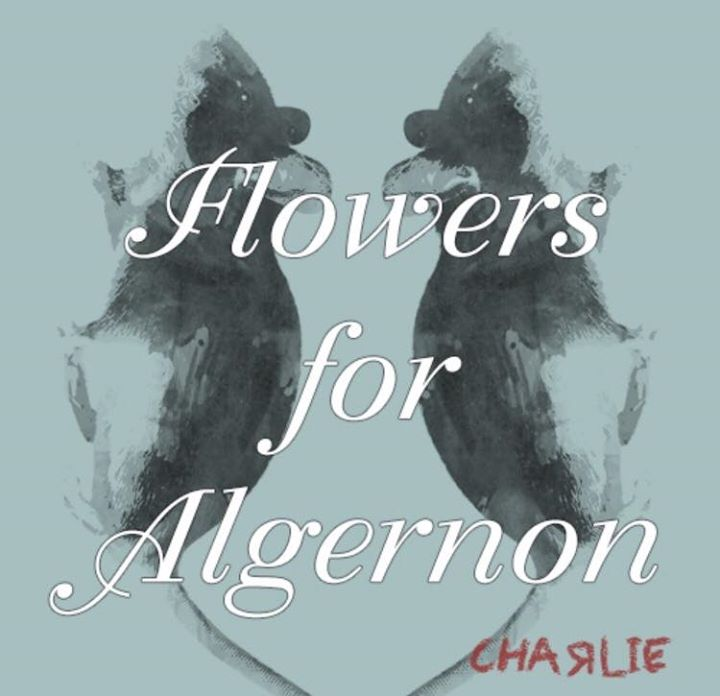 Flowers For Algernon At Dsa-Denver School Of The Arts, Denver