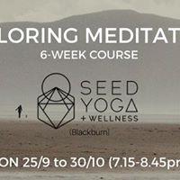 Exploring Meditation (6 week course)