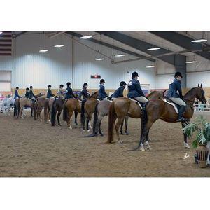 Maha Spring Fling 2019 At Minnesota Equestrian Center Winona