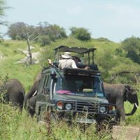 Join 2-Days Tarangire &amp Ngorongoro Safari  400 pp