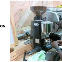 Introduction To Coffee  Barista Skills Foundation
