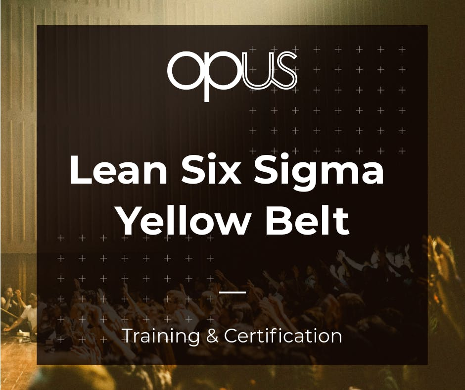 Cebu Lean Six Sigma Yellow Belt Training Certification At Cebu