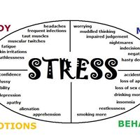Stress the Nervous System and the Road to Resiliency