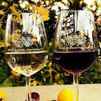 Weinverkostung in Haunstetten