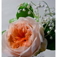 Advance Sugar Flowers Garden Rose and Lily of the Valley