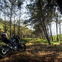 Duke Machas Meetup Ride - BR Hills