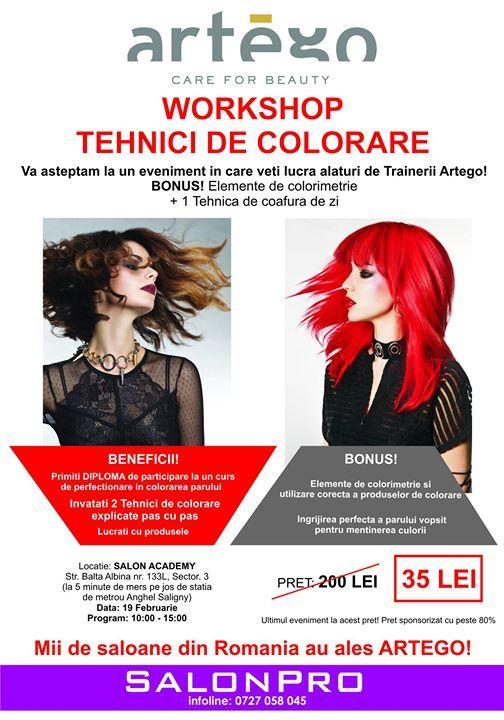 Workshop Tehnici Colorare