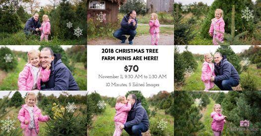 Christmas Tree Farm Minis