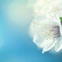 Transforming (Not Repressing) Painful Feelings