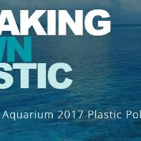 Breaking Down Plastic