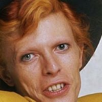 David Bowie Tributo no Vinil Homenagem Aos 70 Anos do artista.