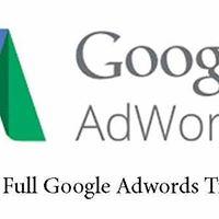 SkilllsFuture - Full Google AdWords Training