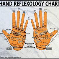 Advanced Hand Reflexology (1day)