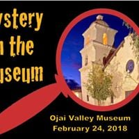 Mystery in the Museum